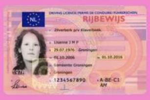 AM Rijbewijs